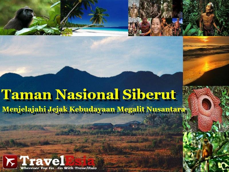 Taman Nasional Siberut