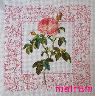 róża haft