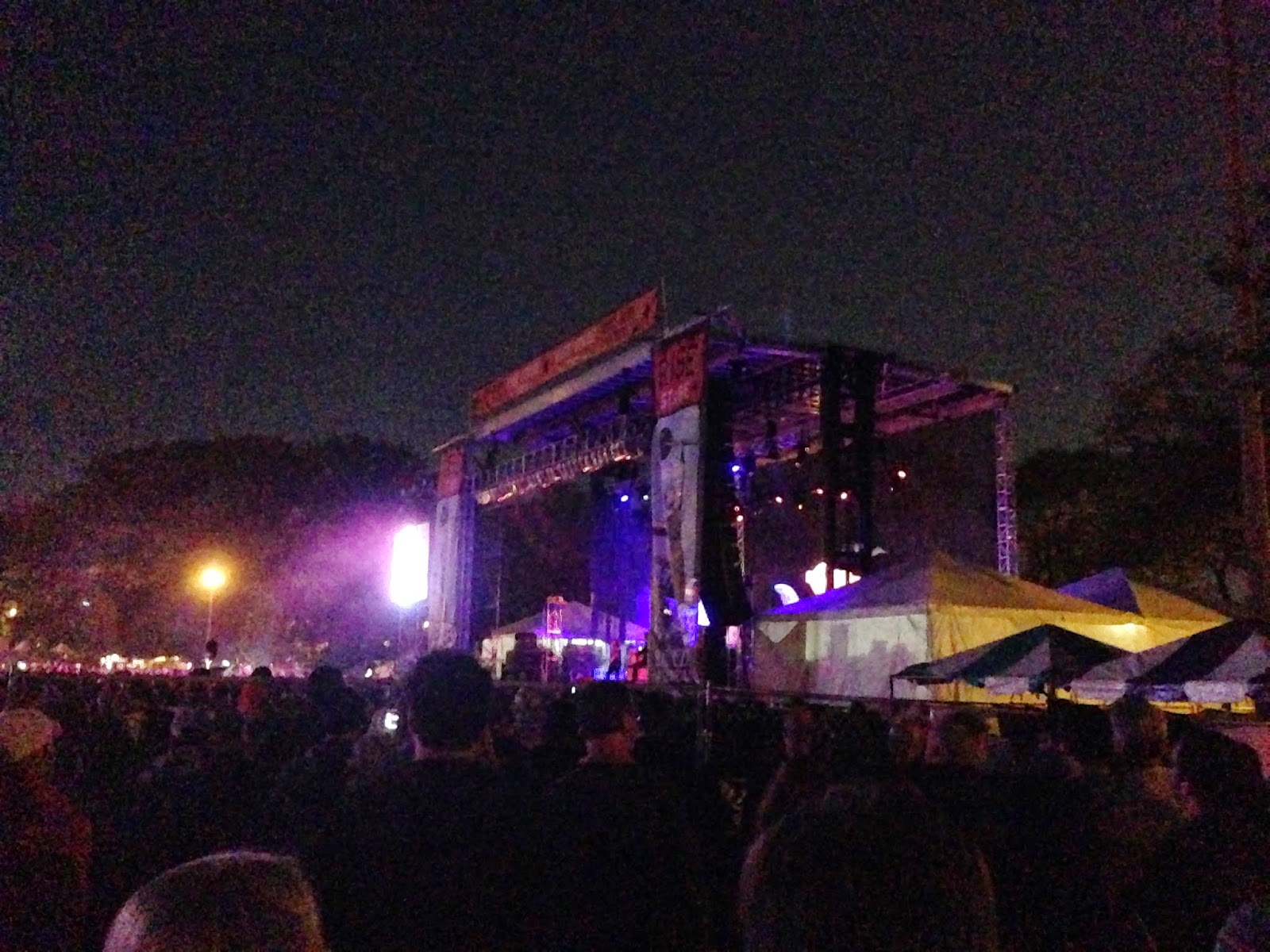 Chicago Boyz » Blog Archive » Riot Fest Chicago 2014