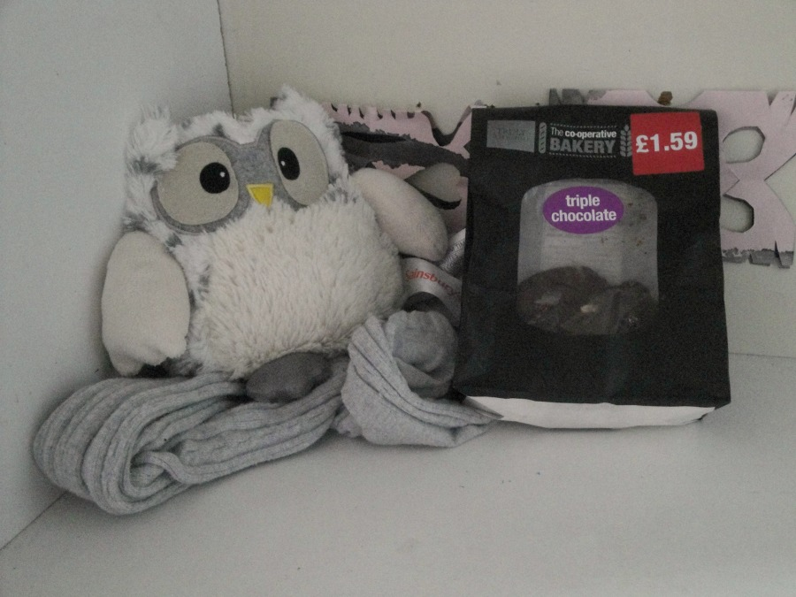 A clearer picture of the owl and cookies. The owl is resting on a pair of textured woolly tights.