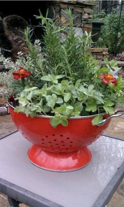 Simpan pot bunga dari sangku ini di atas meja atau gantung di teras sama bagusnya.