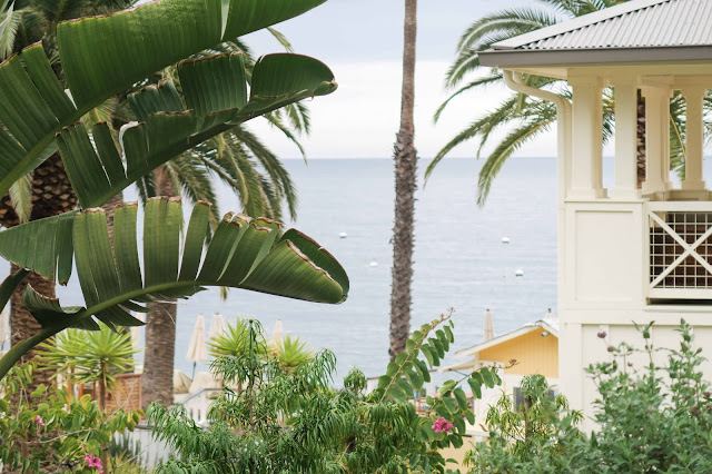 what to do in Catalina, Descanso Beach, Catalina Travel Guide