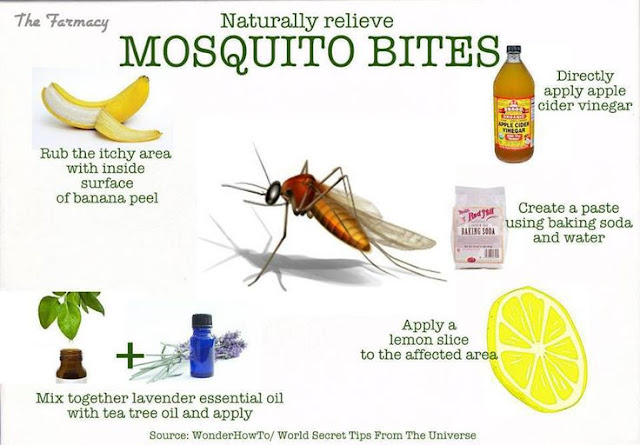 Ways stop Mosquito Bite Itch