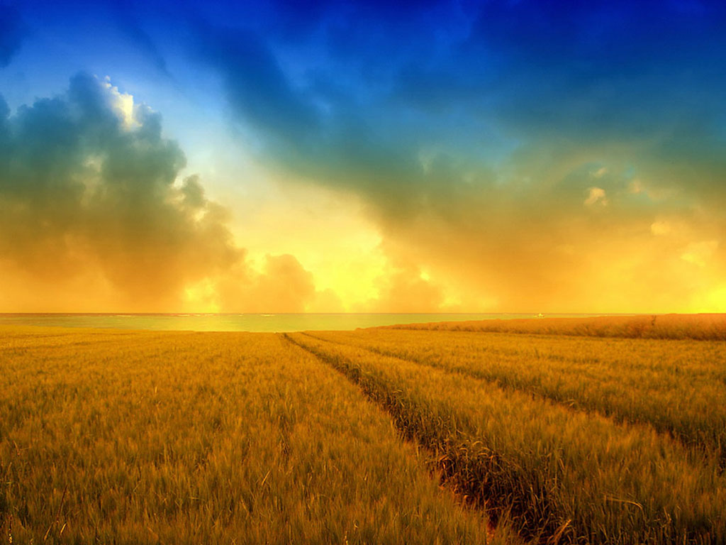 wallpapers: Free Photography Wallpapers
