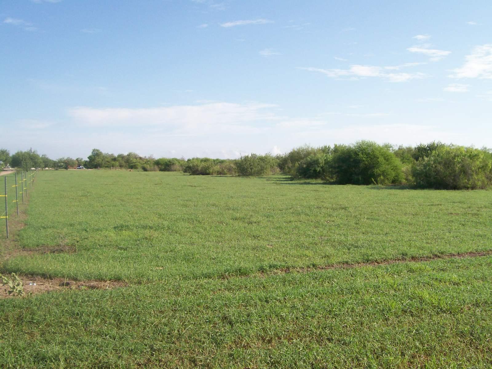 South Texas Ranchette Rister River Ranch