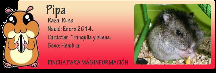 http://almaexoticos.blogspot.com.es/2014/05/pipa-una-imagen-vale-mas-que-que-1000.html