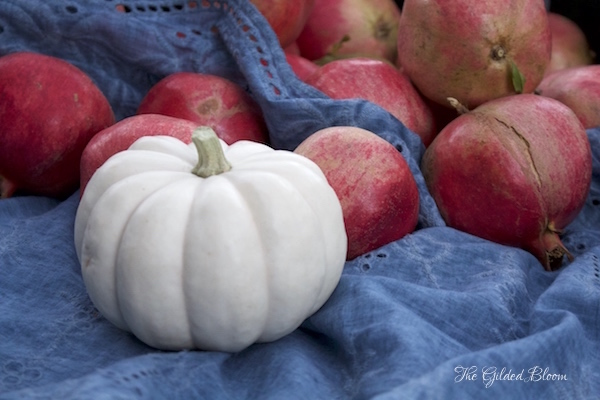 White Pumpkin and Pomegranates- www.gildedbloom.com