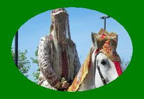 आइये जाने कि दूल्हे को घोड़ी पर ही क्यों बैठाते है? Dulhe ko ghodi par kyo baithaya jata hai?