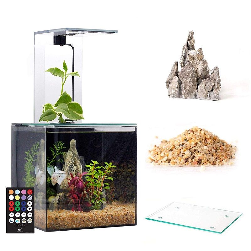 Image Who Else Wants to Learn About Betta Fish Tank Amazon
