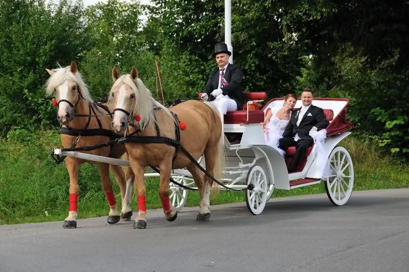 Poradnik ślubny Zaczarowane Dorożki Magiczny ślub
