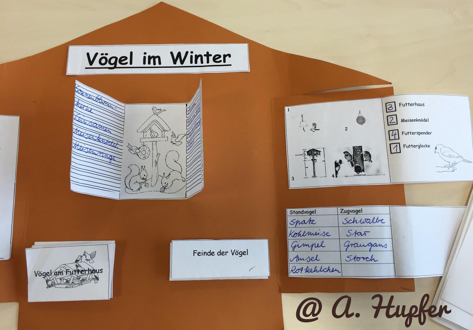 Arbeitsblatt Vögel Füttern Im Winter : Eulenblick mal gastmaterial lapbook quot vögel im winter