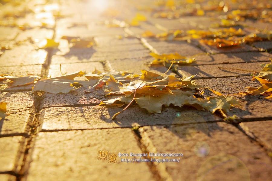 осень чернигов