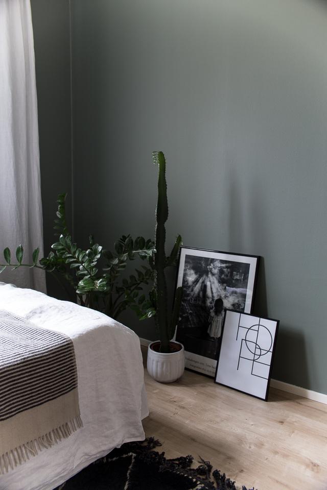 Villa H, sisustus, vierashuone, viherkasvit