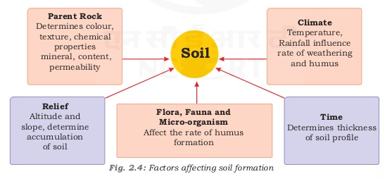 Notes of ch 2 land soil water natural vegetation and for Meaning of soil formation