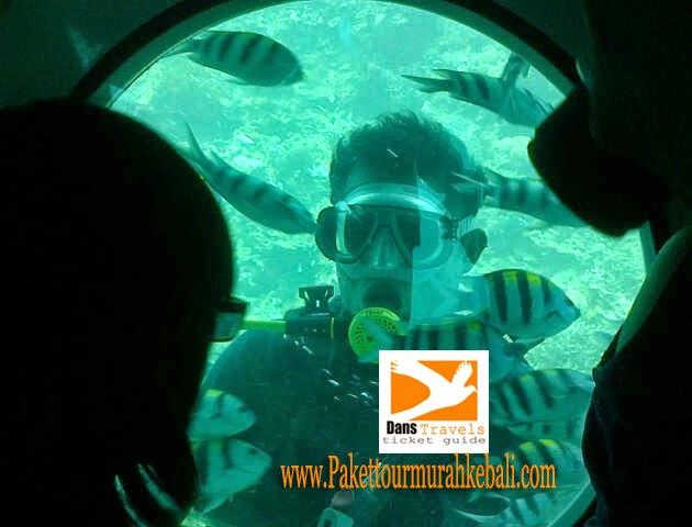 Oddyssey Submarine