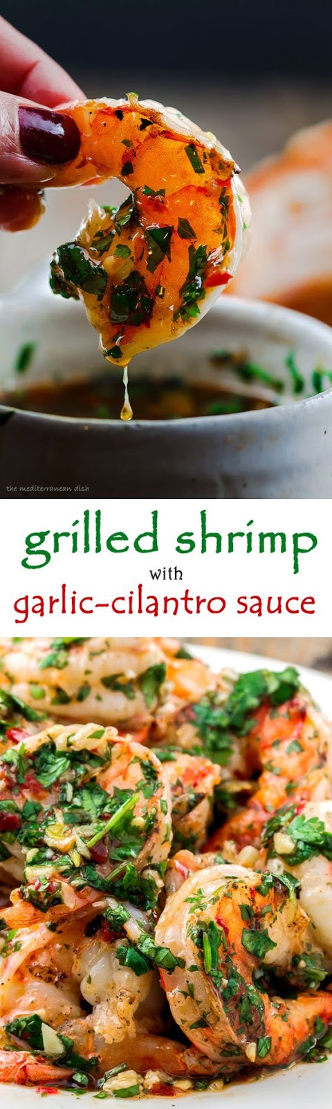 Grilled Shrimp Recipe with Roasted Garlic-Cilantro Sauce