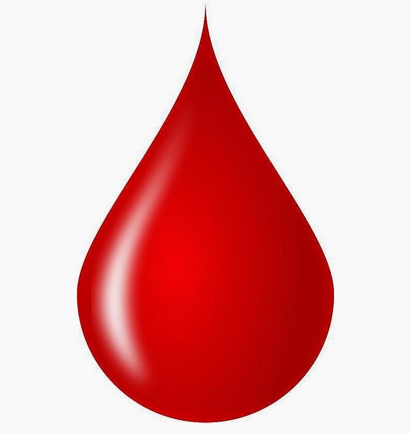 7 Fungsi Darah Untuk Manusia