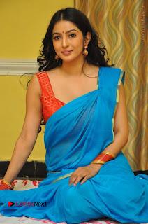 Telugu Actress Vaibhavi Stills in Blue Saree at Www.Meena Bazaar Movie Opening  0088.JPG