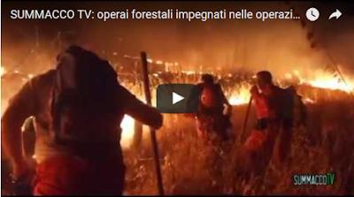 http://www.filodirettomonreale.it/2017/07/12/difficile-pericoloso-lavoro-dei-forestali-video-immagini-spettacolari/