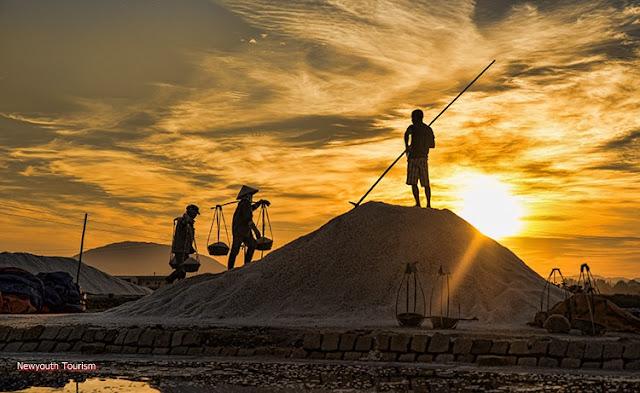 The salt fields near Van Phong Bay, Khanh Hoa province 6