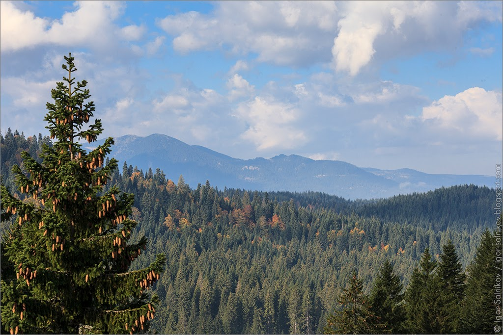 Болгария Пампорово Родопы Родопи горы осень