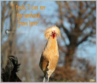 I think I can see the weekend from here!