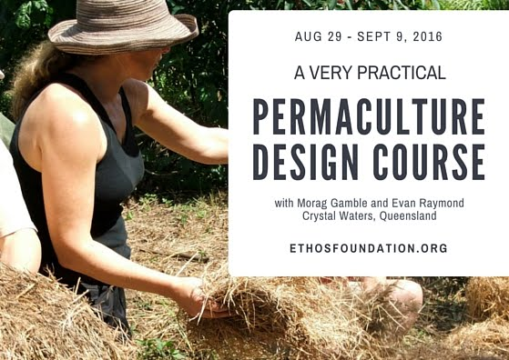 Our Permaculture Life Education As If The Earth Mattered