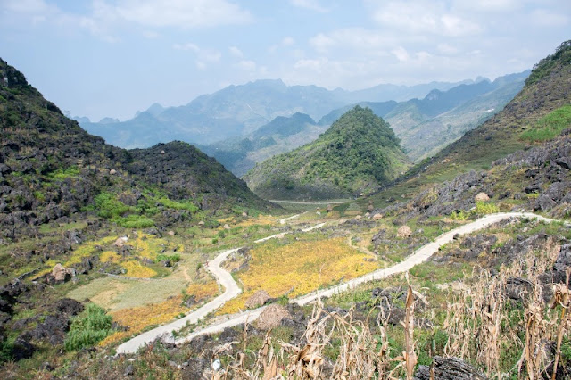 Life Sprouts From Rock Niches in Ha Giang 1