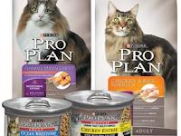 Pro Plan Cat. Harga Proplan kitten kaya protein