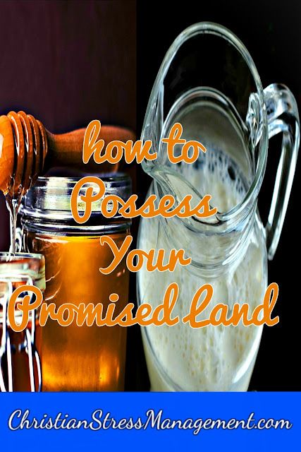 How to Posses Your Promised Land