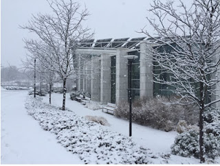 NSCC in the snow