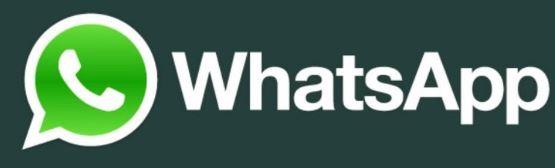 Begini Cara Mengganti Nama Kontak di WhatsApp  Bagaimana Cara Mengganti Nama Kontak di WhatsApp? Ini Jawabannya