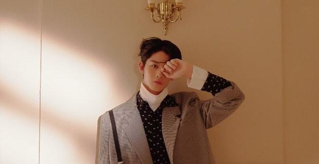 bae-jin-young