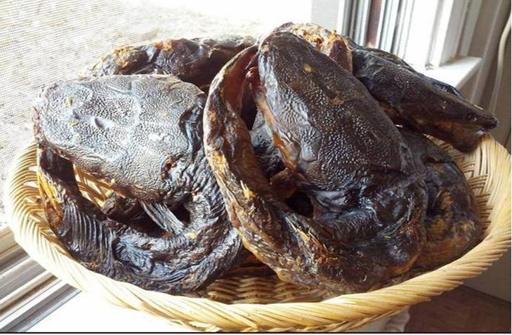 How To Export Smoked CatFish From Nigeria Without Stress