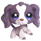 Littlest Pet Shop Multi Pack Spaniel (#672) Pet