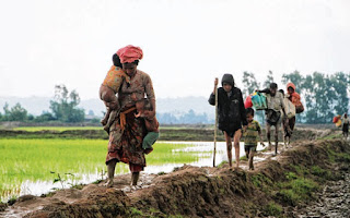 Operation Insaniyat: India to Send Relief to Rohingya Refugees