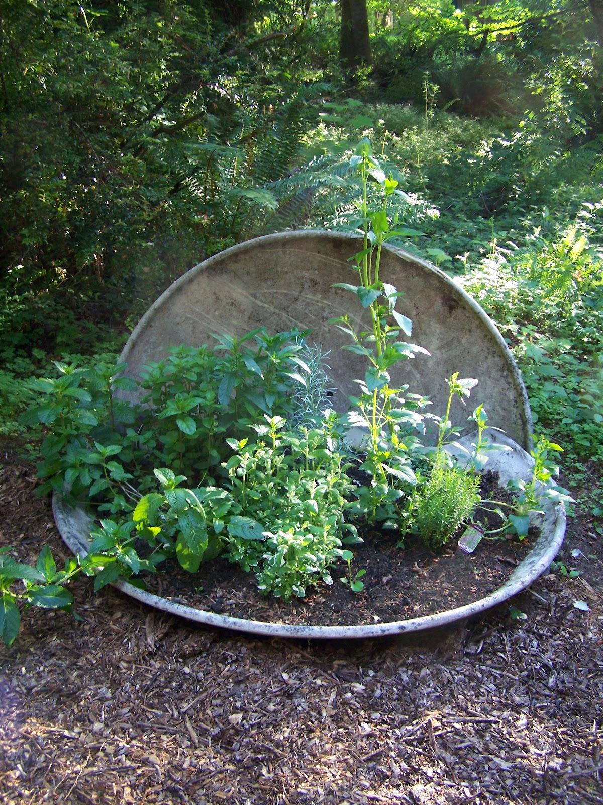 Chef Garden: A Not-So Secret Chef's Garden