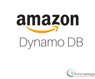 Amazon DynamoDB Training in Hyderabad India - Ecorp Trainings