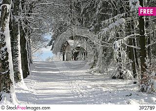 winter blanket.jpg