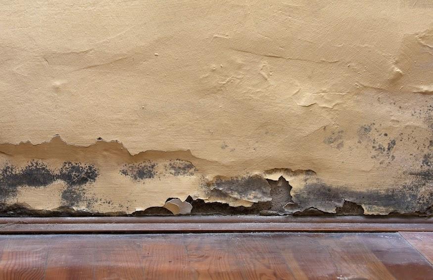 Il blog di salvatore de pascalis umidit di risalita - Macchie di umidita sui muri ...