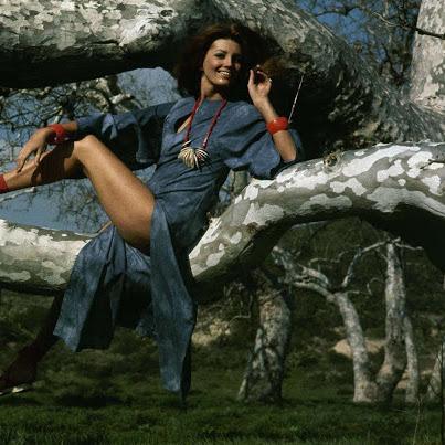 Celebridades e o mundo fashion dos anos 1940 a 1970