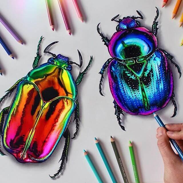 03-Rainbow-Beetle-Scarab-Animal-Drawings-www-designstack-co