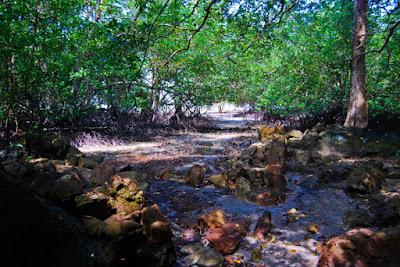 pantai alami bangka belitung