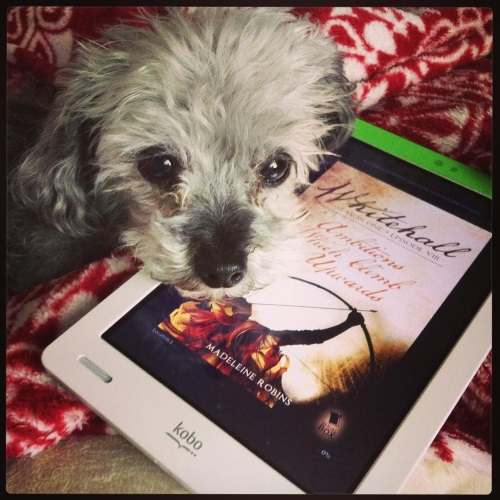 A fuzzy grey poodle, Murchie, lays his chin atop a white Kobo with Whitehall Episode 8's cover on its screen. The cover features a person firing an arrow into the air against a varigated beige background.