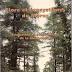 FLore et écosystèmes du maroc (Benabid A.)