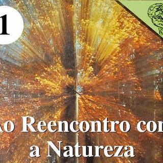 Ao Reencontro com a Natureza - Como encontrar a natureza?