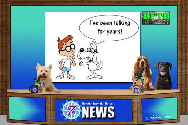 BFTB NETWoof News with Sherman and Mr. Peabody in the background