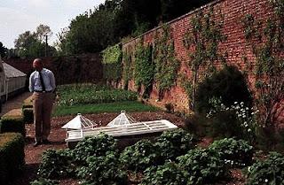 gardening, victorian kitchen garden