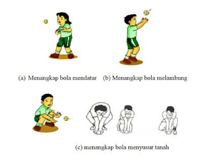 Pengetahuan Dasar Kasti untuk Anak Sekolah Dasar