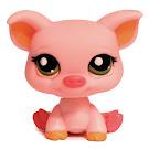 Littlest Pet Shop Multi Pack Pig (#1781) Pet